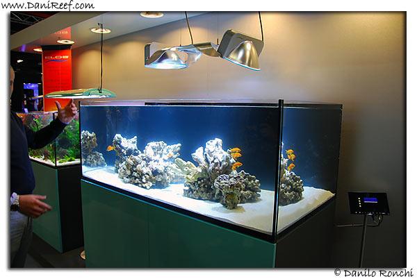 acquario usato 250 litri casamia idea di immagine
