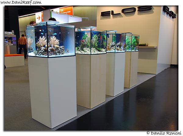Interzoo 2008: Norimberga