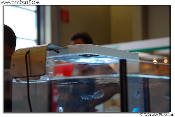 Interzoo 2008, Nürnberg, pics & products DSC_3787
