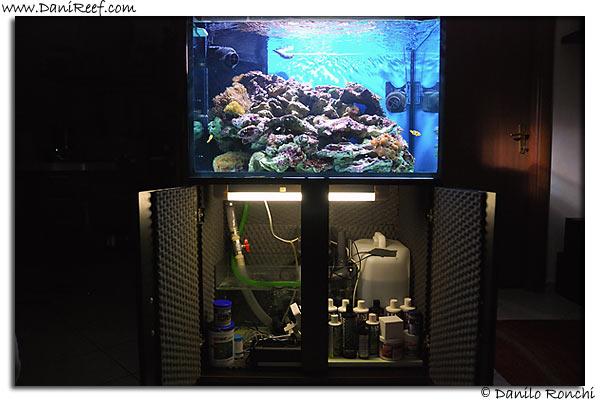 AndreaRoss Tank
