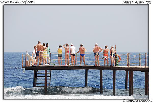 Holiday Beach Resort Beach Marsa Alam Red Sea