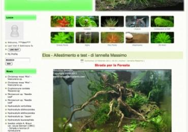 4058__400xfloat=center_rareaquaticplants