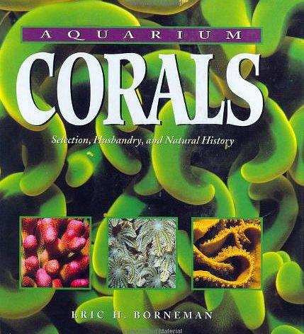 Arrestato eric borneman famoso scrittore di libri sui coralli danireef portale dedicato all - Test dello specchio polizia ...