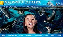 Fremono i preparativi per il primo Teco Open Day presso l'Acquario di Cattolica