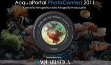 Photocontest 2011 by Acquaportal