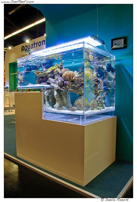 acquario con scarpata seaplast