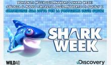 Aiuta gli squali, compra Shark Dash