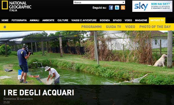 I re degli acquari – nuova serie su Sky Nat Geo Wild