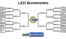 Reef Builders presenta: plafo a led contest 2012