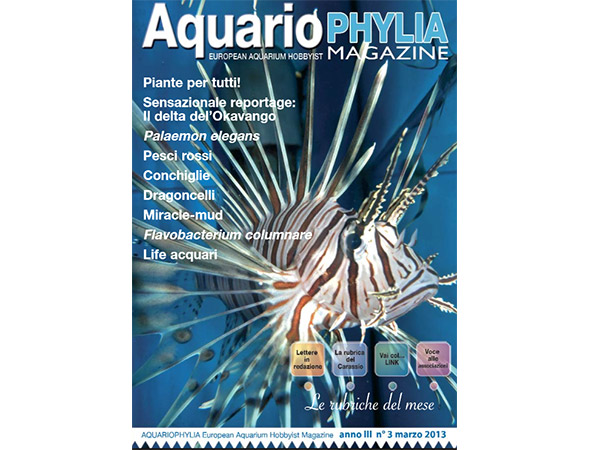 aquariophylia_3_2013