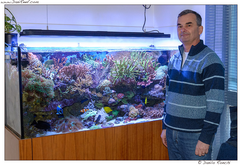 L 39 acquario del mese marino di bolognesi maurizio for Acquario grande usato