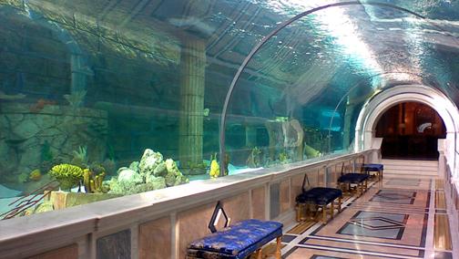 """Il tunnel sottomarino del Royal Palace Shark Encounter Aquarium, progettato e costruito a partire dal 2005 dalla compagnia """"Issham Aquatics"""" con sede in Arabia Saudita."""