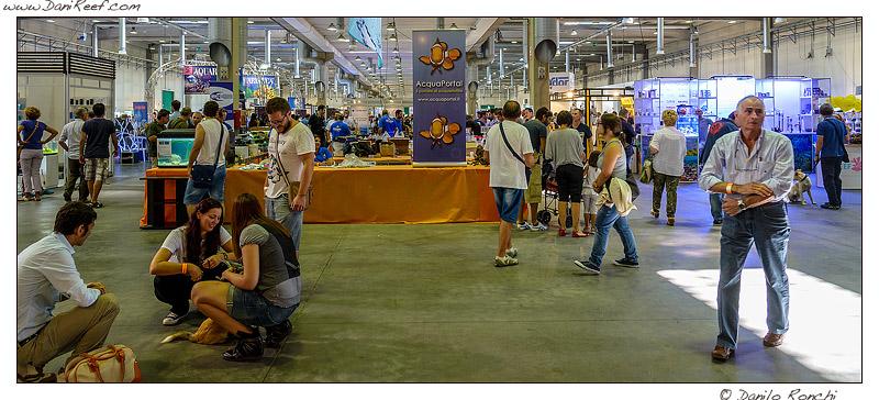 2013_09_petsfestival_008