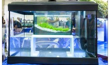 The new polymer for aquariums cabinet by 100 Acquari – Petsfestival 2013