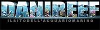 DaniReef – il sito dedicato all'acquario marino sin dal 2007