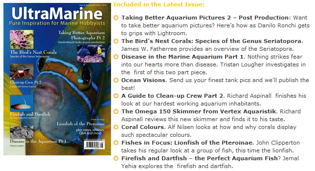 UltraMarine Magazine n.41 esce con la seconda parte dell'articolo sulla postproduzione di Danilo Ronchi