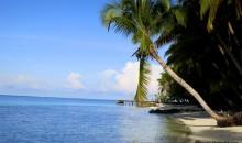 Due tesisti alle Maldive a studiare i coralli