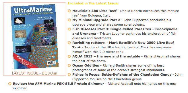 ultra_marine_magazine_42