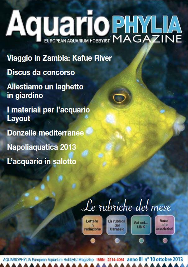 aquariophylia