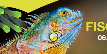 fisch-reptil-2013