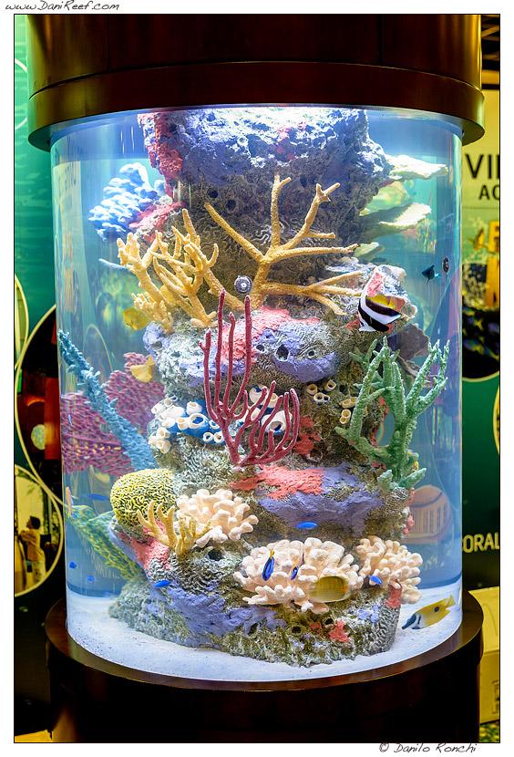i re degli acquari - in mostra al macna