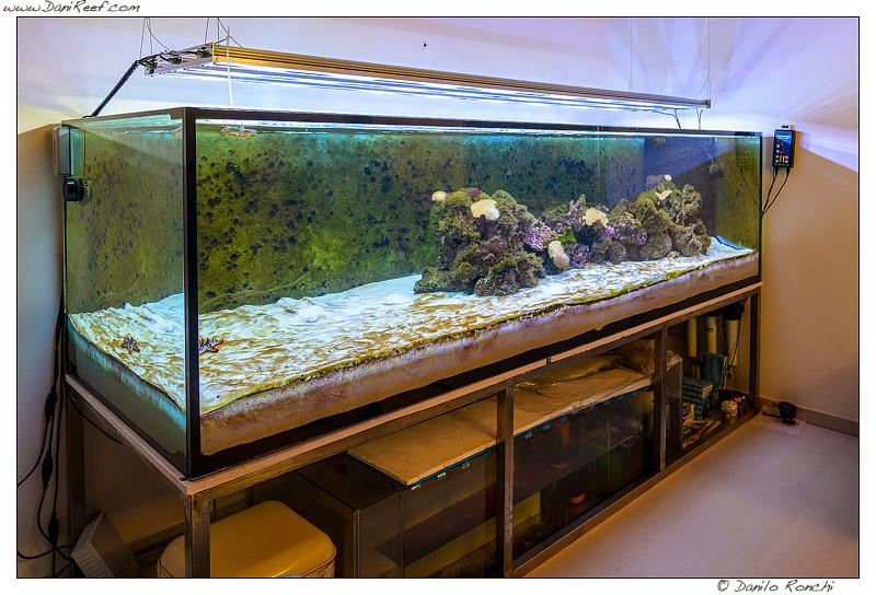3 metri di acquario marino la nascita di un for Acquario casa prezzi