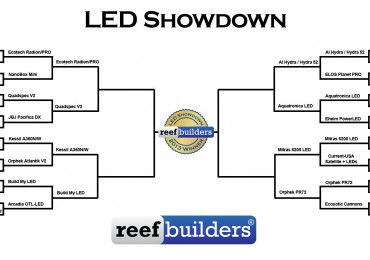LED-showdown-round-3