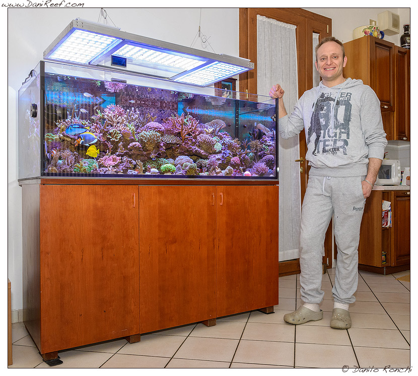 Lo splendido acquario marino dedicato a coralli duri a polipo piccolo sps di gianluca favatà
