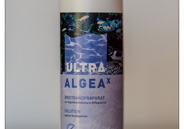 2014_03_fauna_marine_ultra_algeax_002