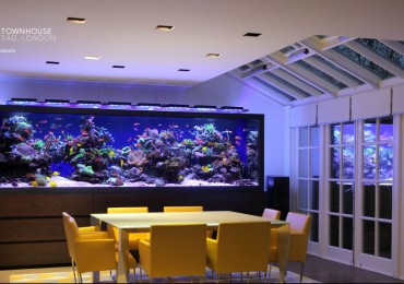 luxury_townhouse_aquarium_2