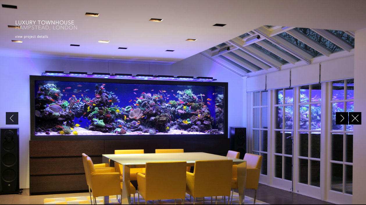 L 39 acquario che tutti noi vorremmo in sala da pranzo for Acquario arredamento
