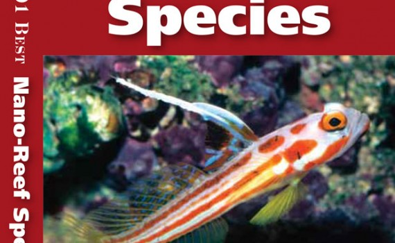 101-Nano-Reef-species-cover