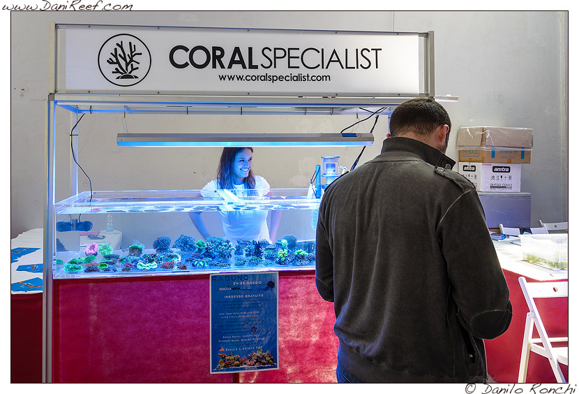 raduno goccia nera 2014 gallarate - coral specialist