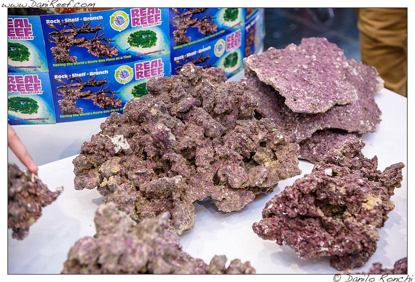 Interzoo 2014 - stand de jong marinelife - rocce vive sintetiche