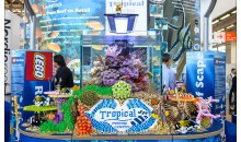 Interzoo 2014: the Tropical Marine Centre booth with Lego, a strange nanoreef and the spy lens