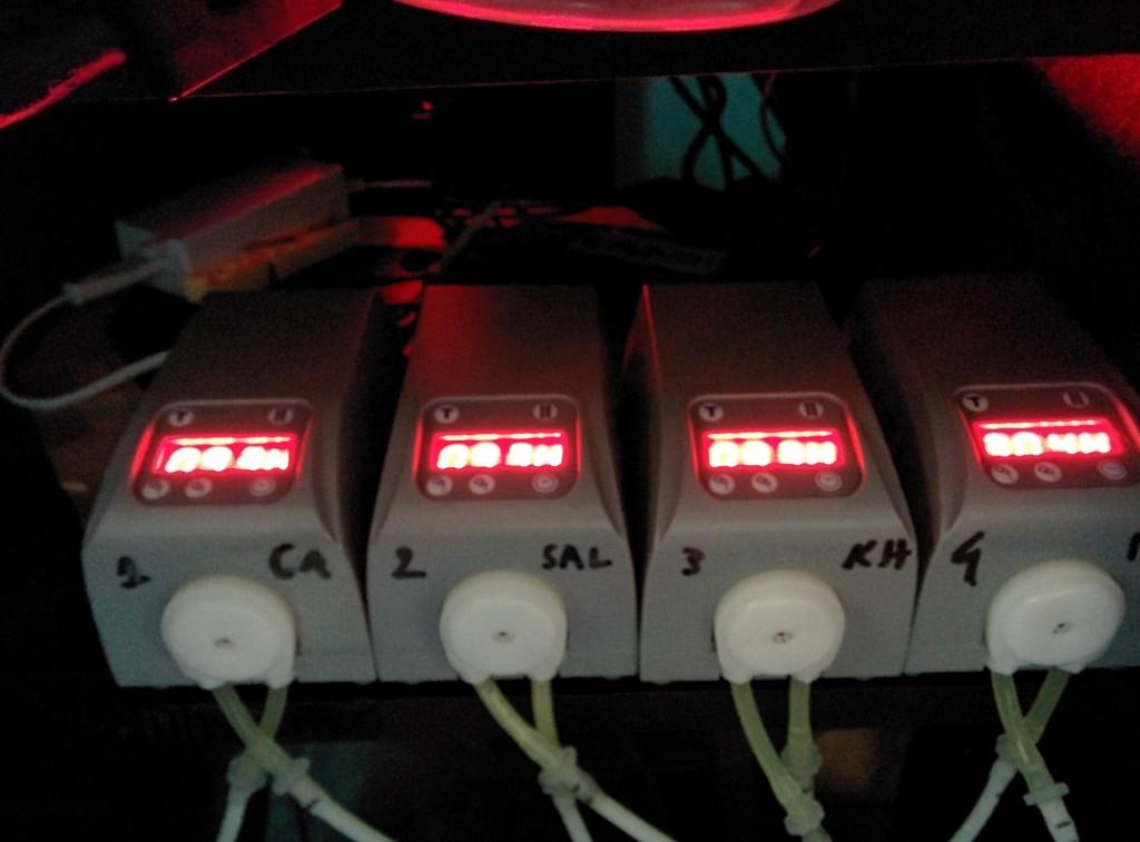 pompe dosimetriche