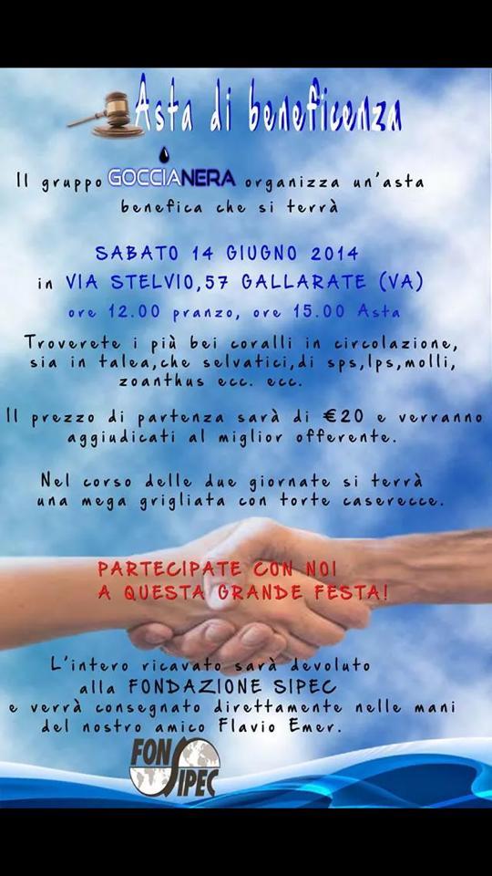 asta_beneficienza_goccia_nera