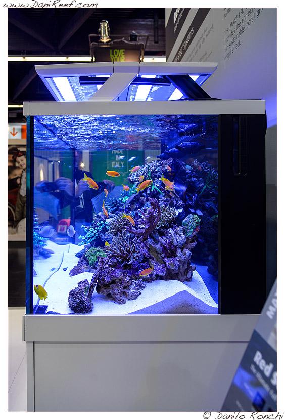 Interzoo 2014 red sea si converte ai led con i nuovi for Acquari nuovi in offerta