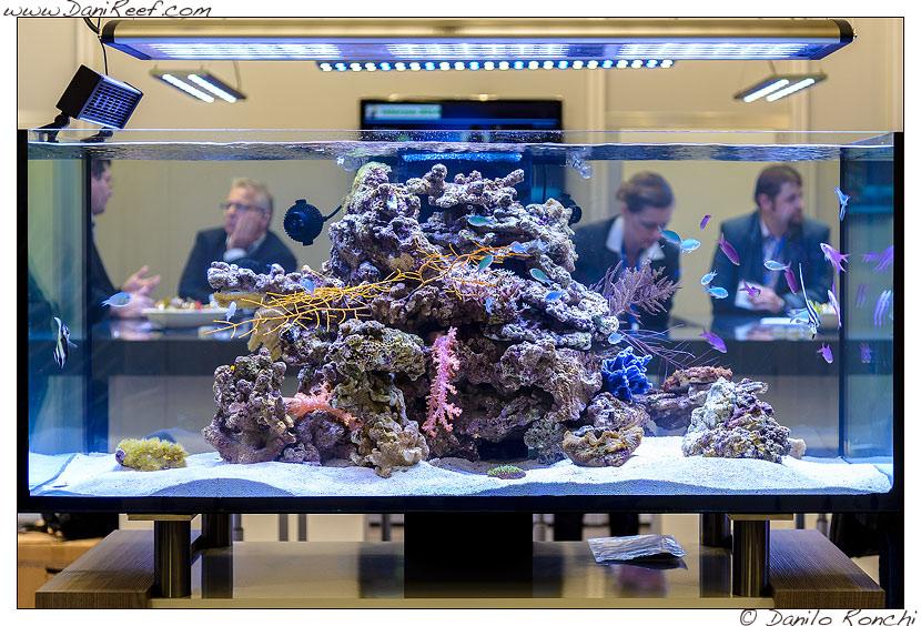 interzoo 2014 lo stand aquamedic il bellissimo acquario