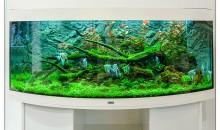 Interzoo 2014: Lo stand Juwel e gli acquari di acqua dolce
