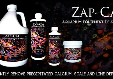zapcal slider