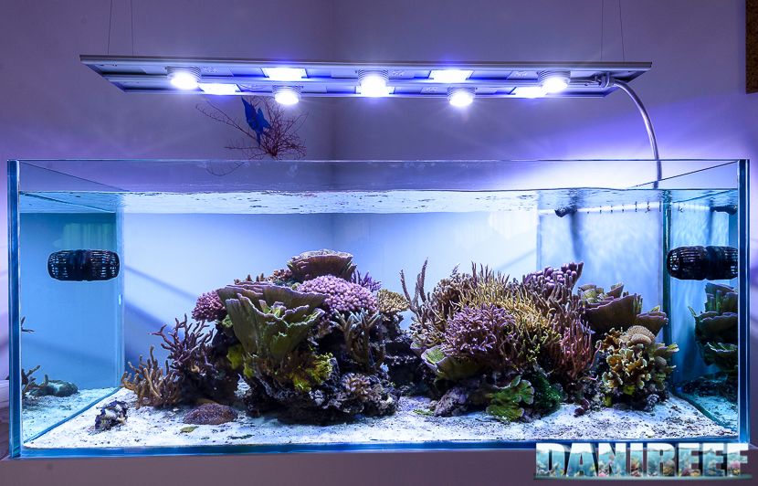Plafoniera a led CEAB Slide&Led SLX120MB sull'acquario di jonathan betti