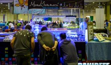 PetsFestival 2014 a Piacenza – Editoriale