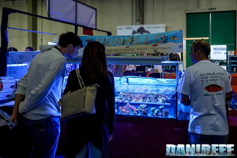 Lo stand città di corallo presso il Piacenza PetsFestival 2014
