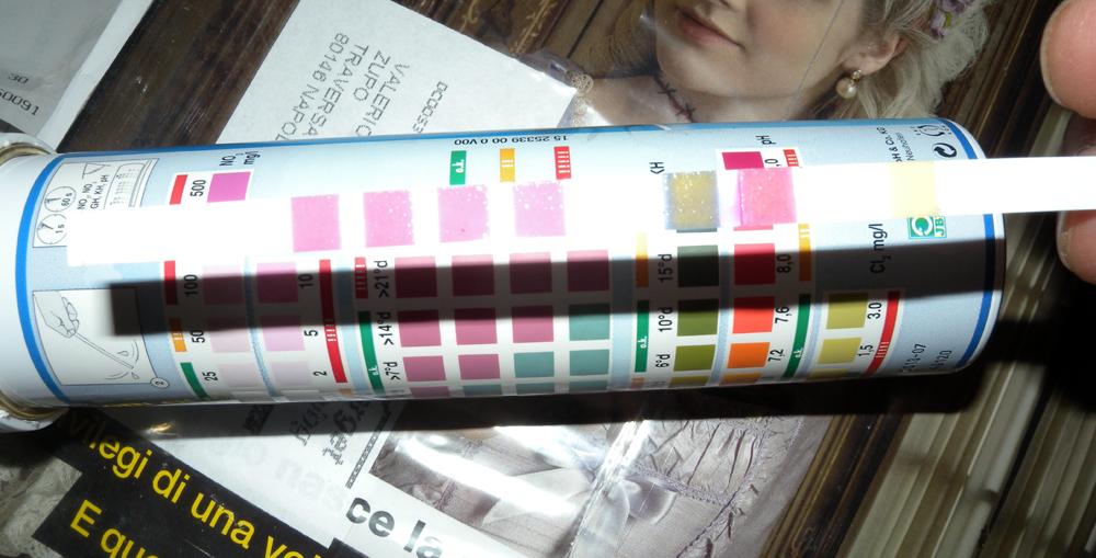 Test kit in strisce
