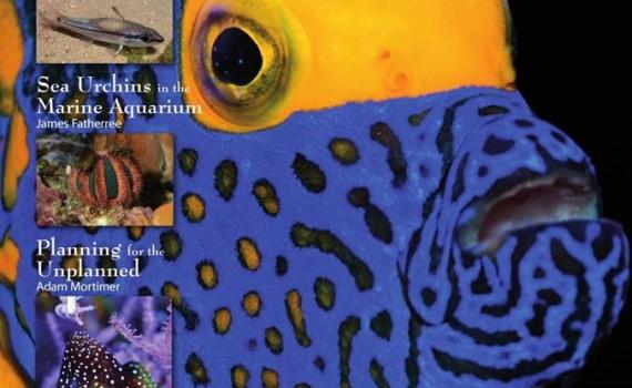 ultramarinemagazine48