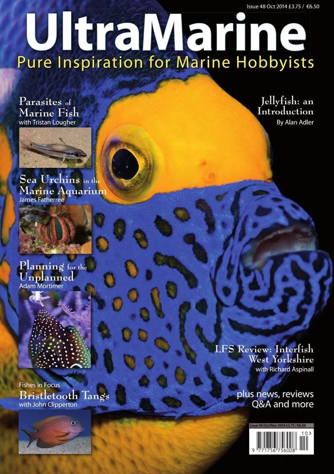 ultramarine magazine 48