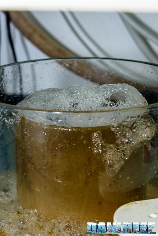 Schiumatoio Vertex Omega 180i - schiuma nel bicchiere