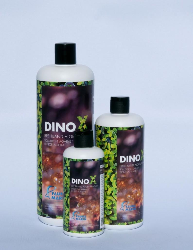 Fauna Marin DinoX