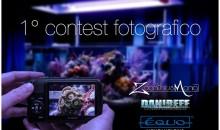 Ecco la foto vincitrice assoluta del concorso sugli Zoanthus e la classifica finale